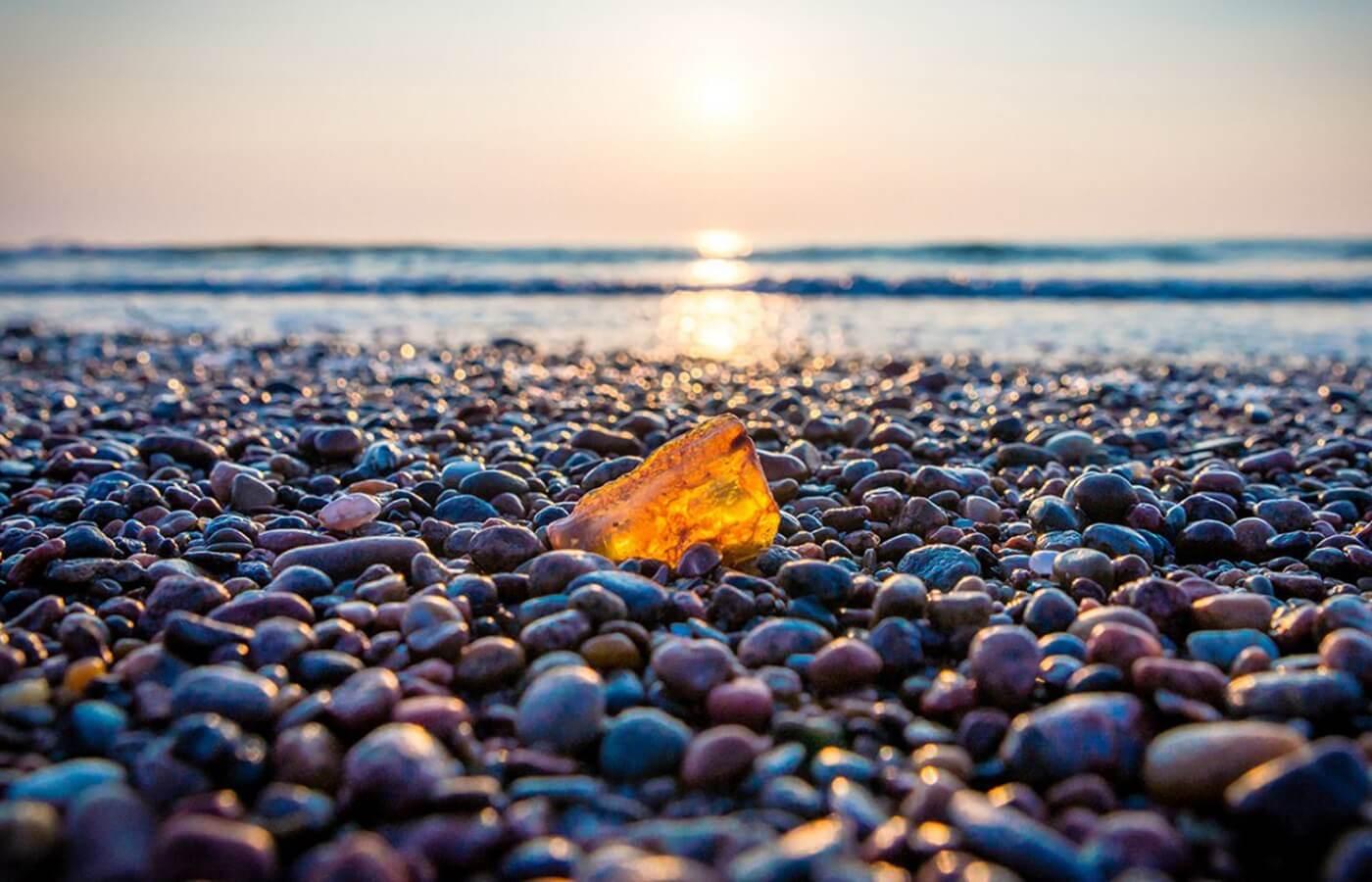 Экскурсия к берегам Балтийского моря